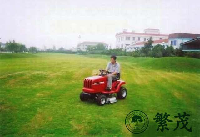 泰州某工厂绿化养护案例