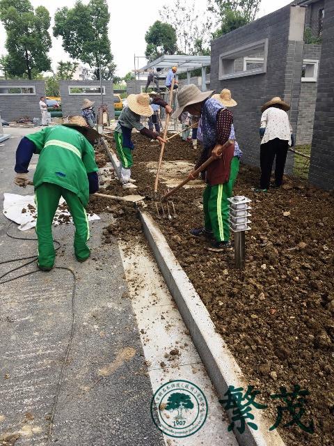 苏州某学校食堂绿化建设工程案例