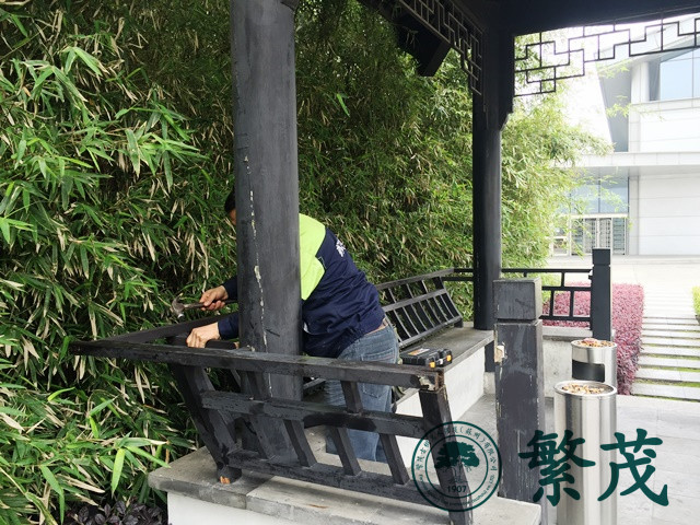 苏州工业园区某外企四角亭修缮工程案例
