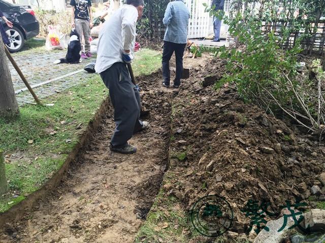 苏州工业园区某小区庭院绿化改造案例