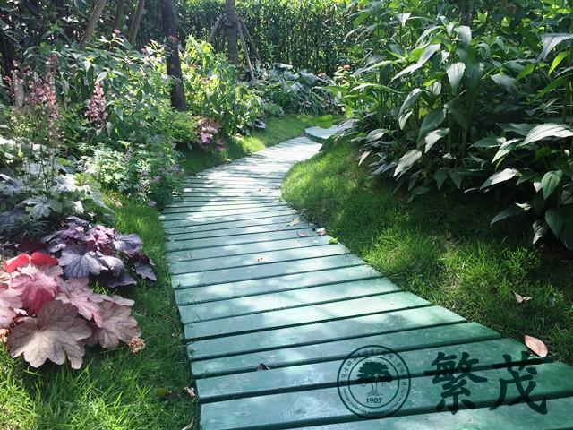 苏州吴中区某别墅庭院绿化景观设计及施工案例