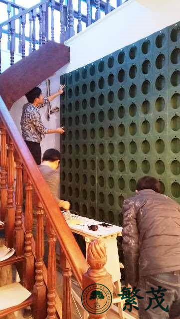 南京某饭店植物墙案例