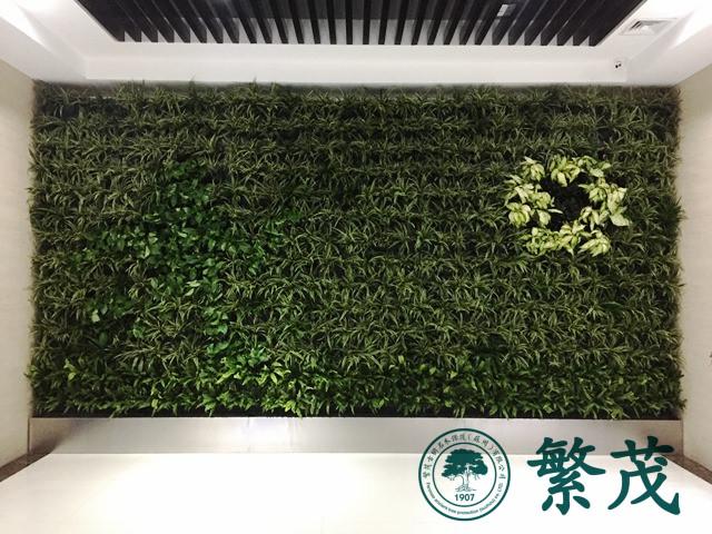 昆山某企业立体植物墙案例
