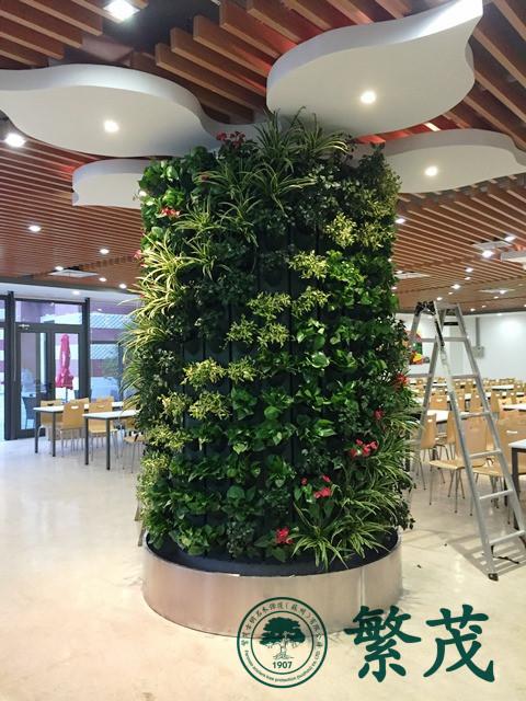 苏州工业园区某国际学校柱型植物墙案例