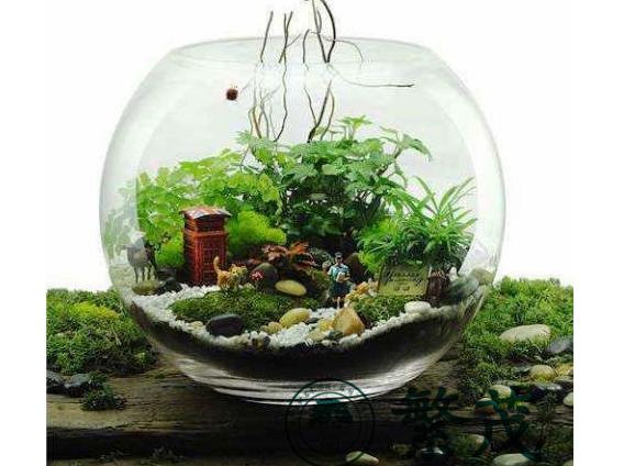玻璃盆景2