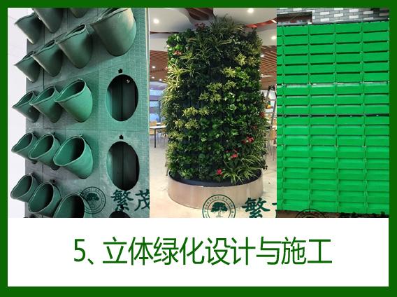 5、立体绿化设计与施工