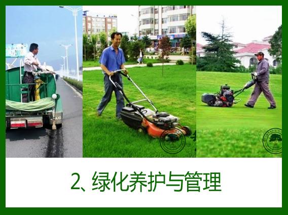 2、绿化养护与管理
